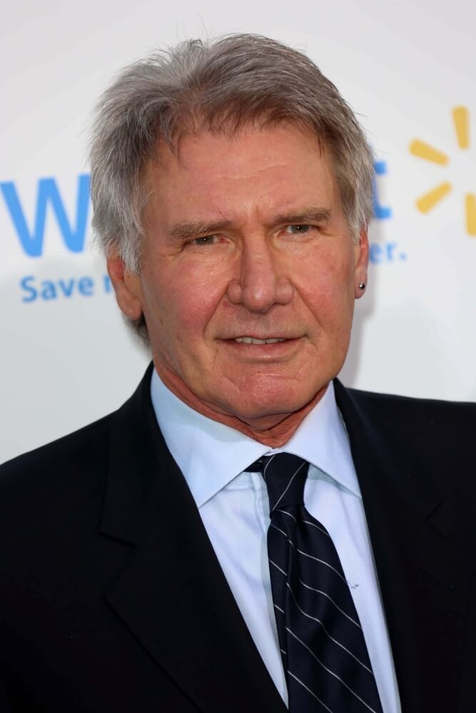 Harrison Ford Plane Crash Venice, Santa Monica