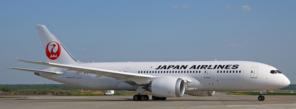 Drunk Japan Airlines' pilot arrested for slapping a policeman