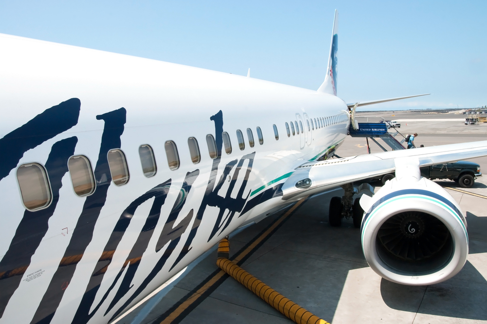worker stuck in cargo hold forced landing