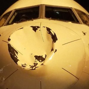 Flight Carrying NBA Stars Damaged By Possible Bird Strike