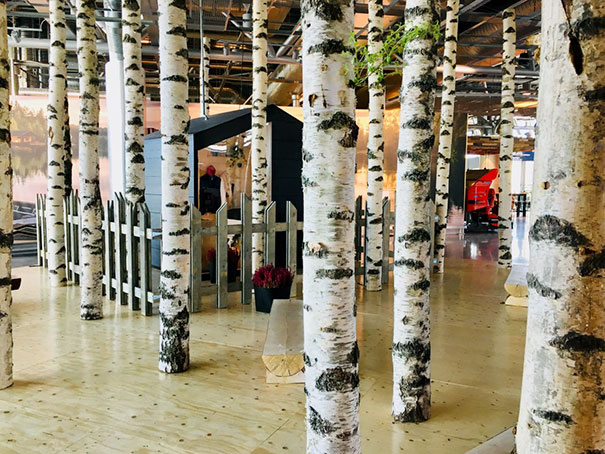 Forest In Airport