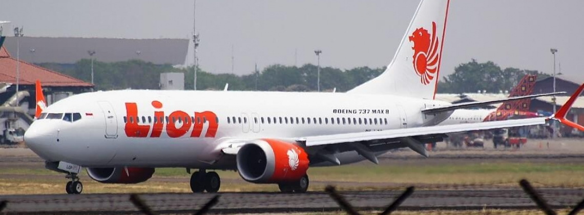 Investigators to issue Lion Air crash report by November end