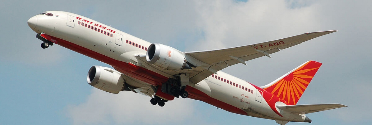 New names in bid for Air India revealed