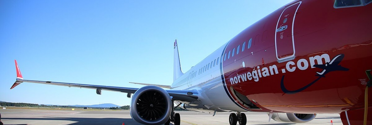 Norwegian CEO and co-founder steps down