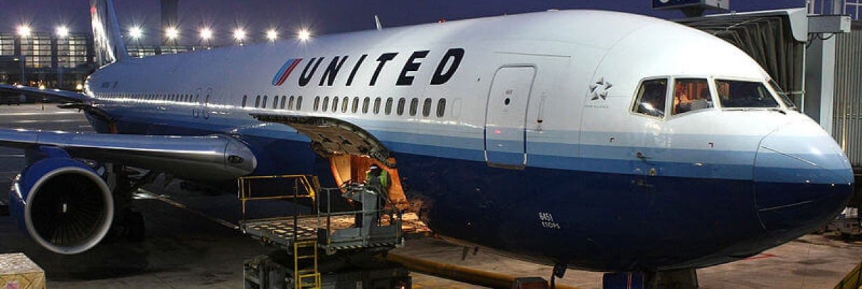 With United Airlines, pets fly the deadly skies