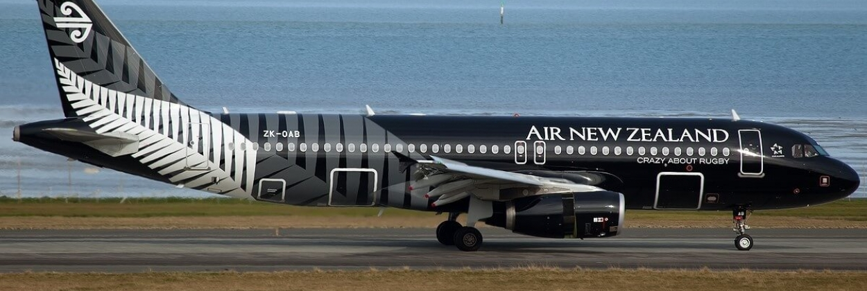 Air New Zealand's CCO resigns after crisis shrinks operations