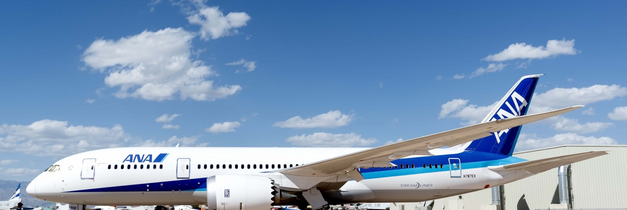 ANA All Nippon Airways to join IATA's diversity program