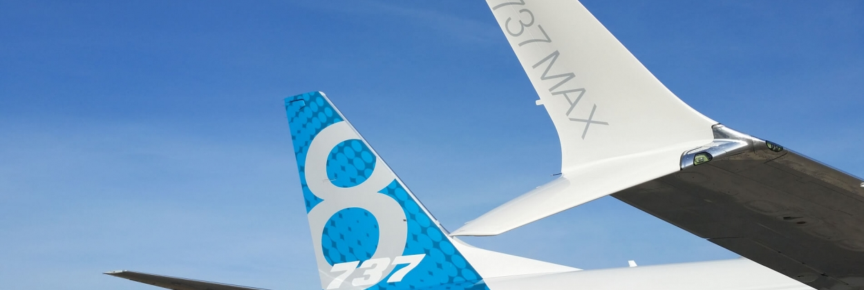 Boeing 737 MAX tail and winglet
