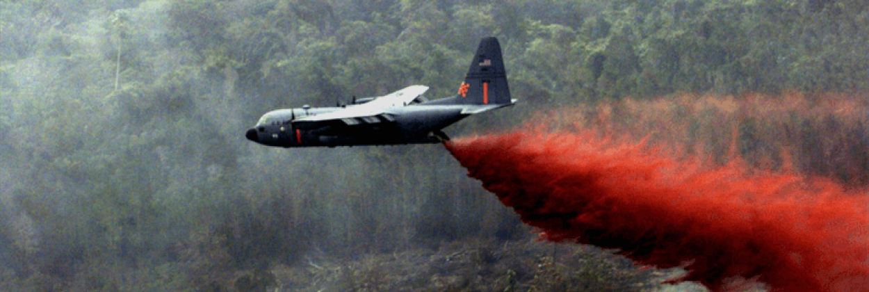 Water bombers scramble to fight the Amazon forest fires