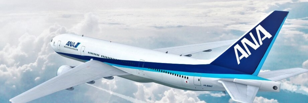 Aerial view of All Nippon Airways (ANA) Boeing 777 in flight. 3D