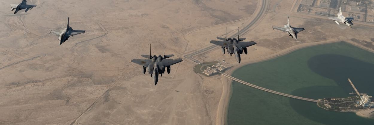 The many wings of the Persian Gulf | Data