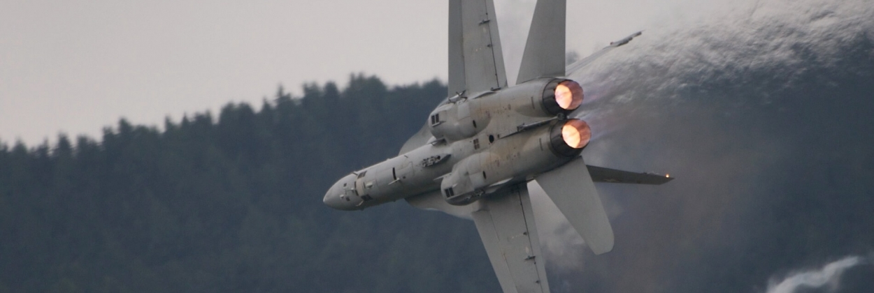 58% of Swiss voters support buying new fighter jets, poll shows
