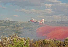 French waterbomber crashes during forest fire, one pilot dead