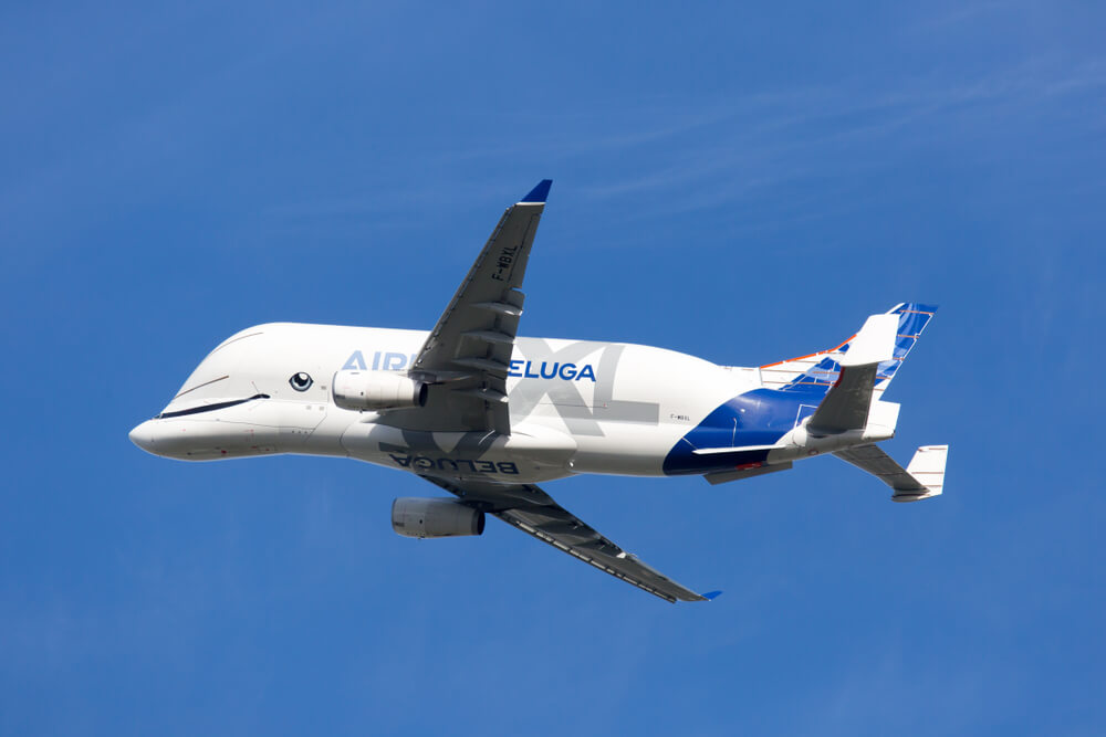 Image result for beluga airplane images